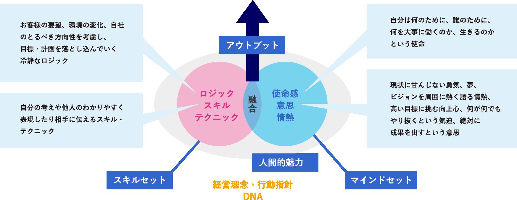 ヒューマンスキルとコンセプチュアルスキルに重きをおいたスキル強化